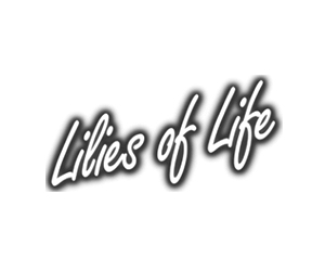 Lily's of Life -min
